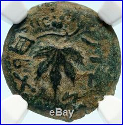 Authentic Ancient JEWISH WAR vs ROMANS 67AD Historical JERUSALEM Coin NGC i83929