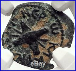 BRITANNICUS NERO Antonius Felix Jerusalem Ancient Roman CLAUDIUS Coin NGC i69609
