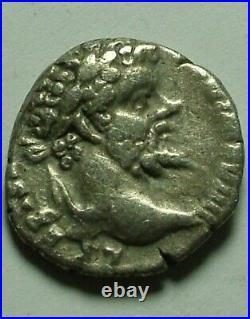 Genuine ancient Roman silver coin Septimius Severus denarius Elephant