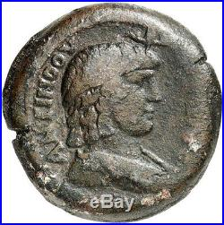 HADRIAN's Lover ANTINOUS 134 AD NGC Certified VF Alexandria Ancient Roman Coin