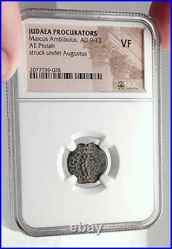 MARCUS AMBIBULUS Augustus Jerusalem Ancient 10AD BIBLICAL Roman Coin NGC i70930