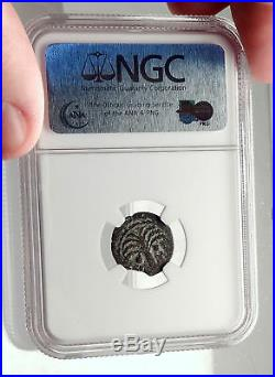 MARCUS AMBIBULUS Augustus Jerusalem Ancient 10AD BIBLICAL Roman Coin NGC i70947