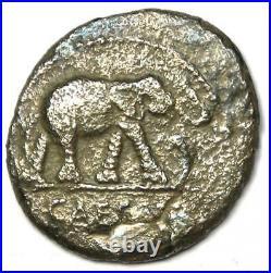 Roman Julius Caesar AR Denarius Elephant Coin 48 BC VF / NGC Photo Certificate